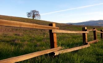 steccato numero 8